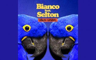 Saremo Giovani: Bianco & Selton scongiurano la Sudade