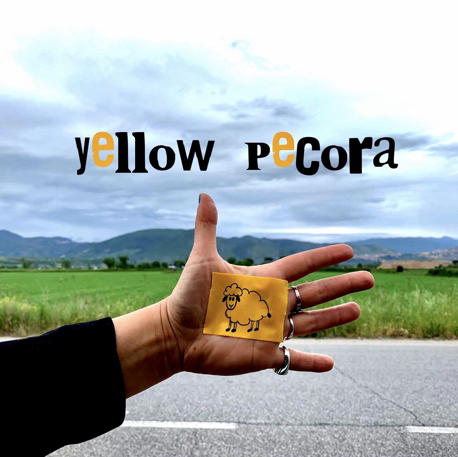 """""""Yellow Pecora"""": la canzone fuori dal gregge di Milomaria"""
